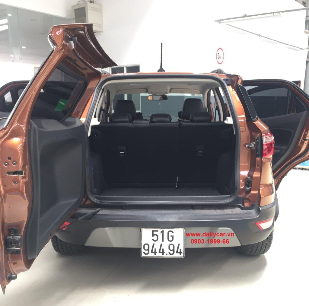 Cop sau xe Ford EcoSport 2019
