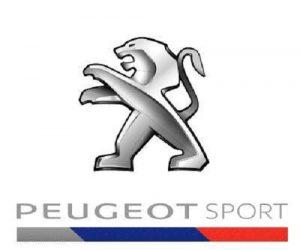 xe-peugout-5008