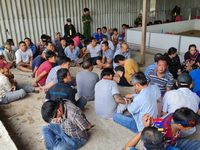 Công an TP Cần Thơ vây bắt 153 đối tượng đánh bài trong kho gạo 4